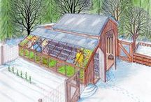 HOMESTEADING~Structures