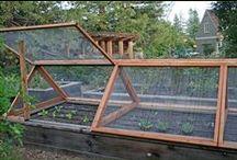OUTSIDE~Garden Beds, Frames, Borders