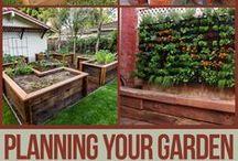 OUTSIDE~Garden Planning