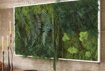 Vertical Gardens Indoors