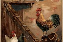 Chickens, rabbits, and more / by Follow Me Farm