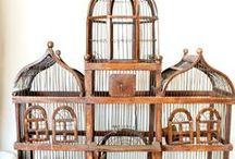Project Birdcage