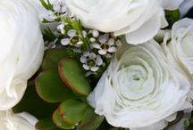 Weddings at the Leland Lodge / Weddings at the Leland Lodge