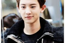 Chanyeol❤️ / B I A S ♡ 사랑해 ♡