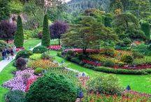 World gardens / Garden