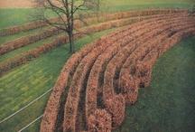 Wirtz landscape designers