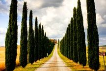 Tuscan Excellence / Tuscany made with ♥