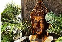 Buddha / by Tawanda Kincaid