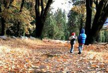 Fall Family Fun / Indoor and Outdoor Fall themed activities for kids!
