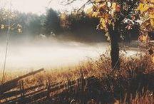 Tartan for Autumn Days