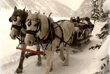 Winter / Winter, Snow, Winter Scenery, Sleigh Rides, Snow in Mountains