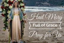 Mary / Pray for Us, O Holy Mother of God!