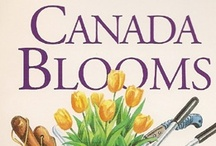 Canada Blooms Posters