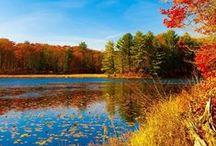 Maine Coast & Lakes