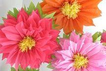 flores papel / by sandra regina