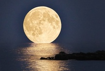 Photographs, moon / by Jane Willis