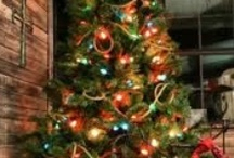 Christmas Trees & Decorations / by Sandra Gregory