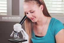Homeschooling Science / Homeschool science ideas!
