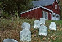 Haunted Home / Halloween housewares and decor