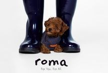 Animals love Roma / by Roma Boots