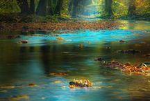 Et au milieu coule une rivière / by Cot Cot Cot