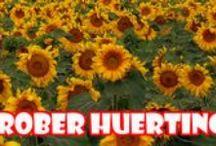 Huerting / Huerting, ecología, naturaleza