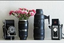 the Photographer´s Gear / Lenses, tripod, props and other camera and photography stuff.