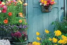 Cottages & gardens / The colors, the smell... / by Maj Laa