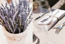 Lavender Love / Lavenders, lavenders & lavenders:  In our homes...in the countryside...real...embroidered...painted...