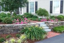 Linex Landscapes / Designing, Building, and Caring for Landscapes for over 30 years. Linex Landscapes offers a unique combination of creative professional design services with quality construction methods.