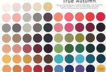 colours / seasonal types