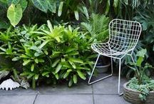 Gardens, plants interiors, green house, topiary, outdoors...
