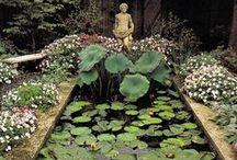 stones & water in the garden