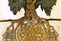 WorldTree / Inspirations from the natural world in a former age