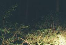 My、Photograph
