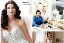 David Tutera Bridal Gowns / Design, construction, beauty, and value are all words to describe this collections of wedding gowns by David Tutera for Mon Cheri!!!!!   FABULOUS would also describe these wedding gowns!