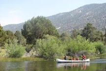 Resident Camp / Camping with the YMCA of Riverside County