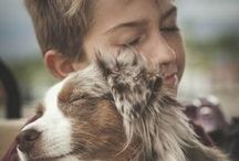 Pets and children / Kids and the love for their pets