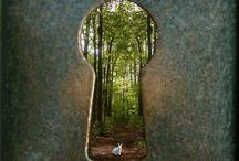 Dreams | Fairytale | Fantasy | Forests | Legends | Magical | Mist | Mystical | Myths | Nature | Surreal