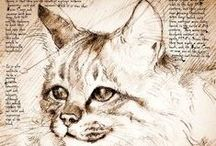 Illustrazioni, disegni di gatti, di cani...