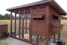 Barns/Coops/Fencing / Barns, storage sheds, coops, shelters, runs, milking stands, fencing, hedges, fedges, waterers, etc. / by SRH Farms