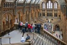 Awesome Museums