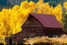 Beautiful Barns  / The Beauty In Barns Group Board. Hi, If You Want To Join A Board, Please Mention In The (ADD A COMMENT) Section of Any Pin on The First Board (ADD ME) Board Which Board(s) (Up to 25 Boards) You Want To Join, I Will Do The Rest. {PLEASE READ} NO DOLLAR $IGNS, NO SPAM, NO PEOPLE or PET PHOTOS. Thank You  / by ( Gardening Dig It )
