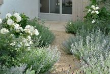Front garden ideas / First impressions make a difference. Ways to create a stylish front garden.