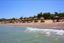 Mithimna / A Normal Crouded beach that has a Restaurant/Cafe were you can eat tasty createan food!!