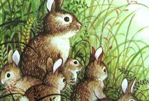 Coelhinhos pinturas