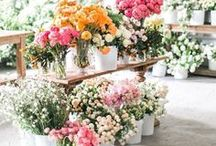 to arrange: florals