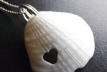 Shell Jewelry / Always with a tinge of echocardiography