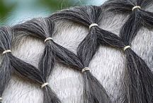 Horse hair do's / Braids to try on Rose