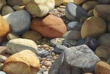 Kagylók, kövek, kavicsok, csigák / tenger